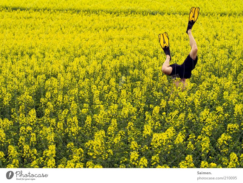Human being Man Nature Plant Joy Yellow Sports Relaxation Movement Freedom Legs Field Adults Masculine Environment Crazy