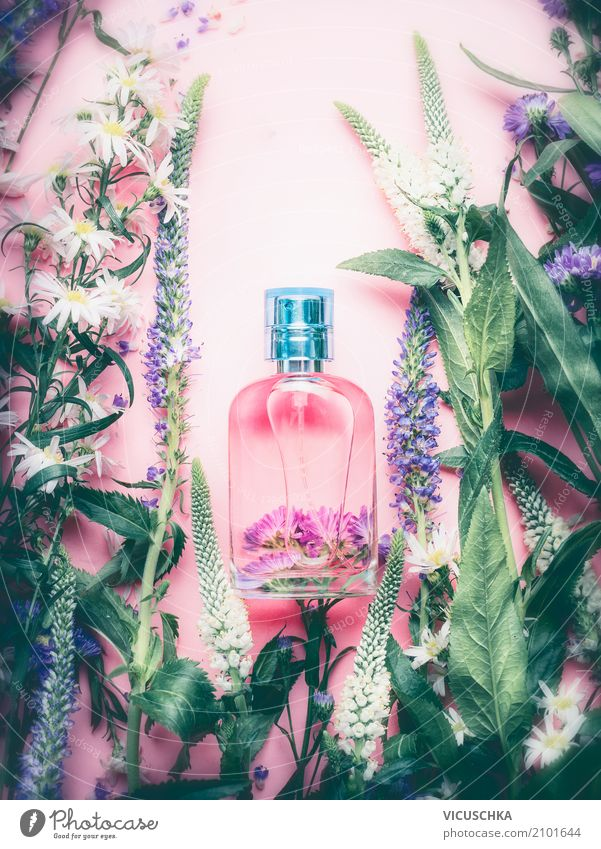 Nature Plant Beautiful Flower Lifestyle Healthy Style Pink Design Shopping Wellness Personal hygiene Fragrance Cosmetics Spa Perfume