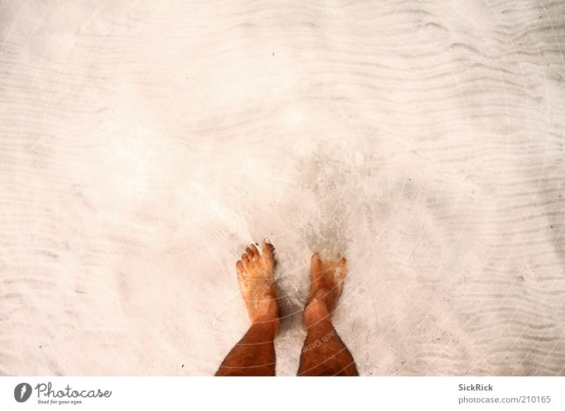White paradise Vacation & Travel Tourism Summer Beach Ocean Legs Feet 1 Human being Sand Water Barefoot Swimming & Bathing Colour photo Exterior shot