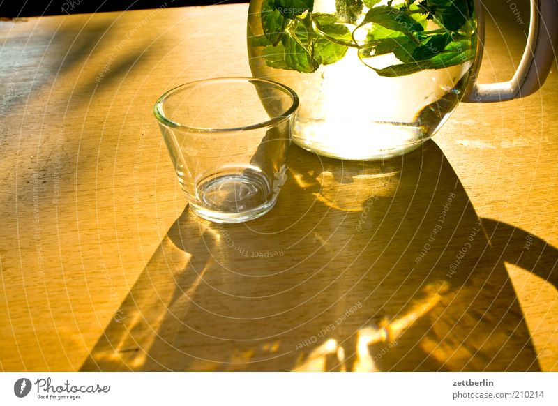 Nature Water Plant Summer Calm Life Relaxation Glass Table Drinking Herbs and spices Beverage Refreshment Light Jug August