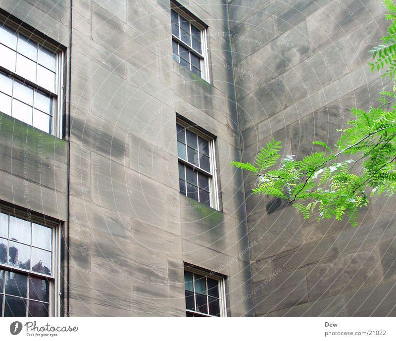 quiet old building Building Window Calm Architecture