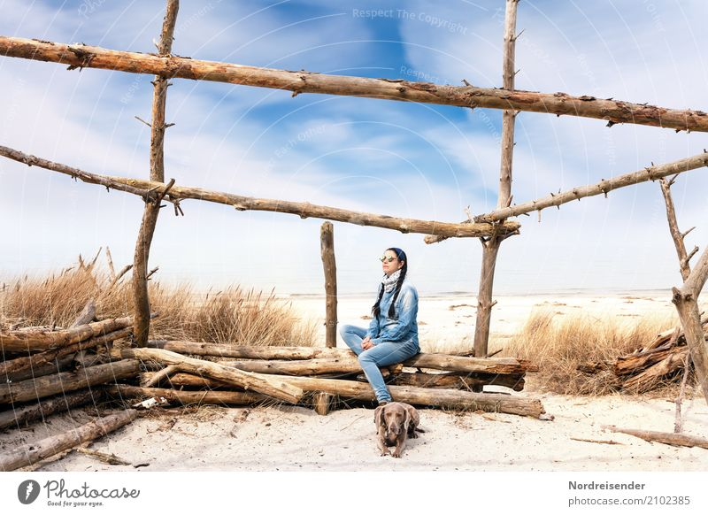 Woman Human being Nature Vacation & Travel Dog Summer Landscape Ocean Animal Calm Beach Adults Life Lifestyle Feminine Grass