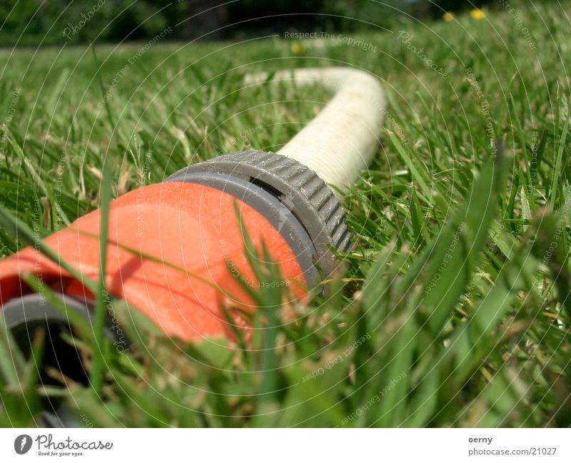 Water Meadow Garden Park Lawn Leisure and hobbies Hose Water hose Garden hose