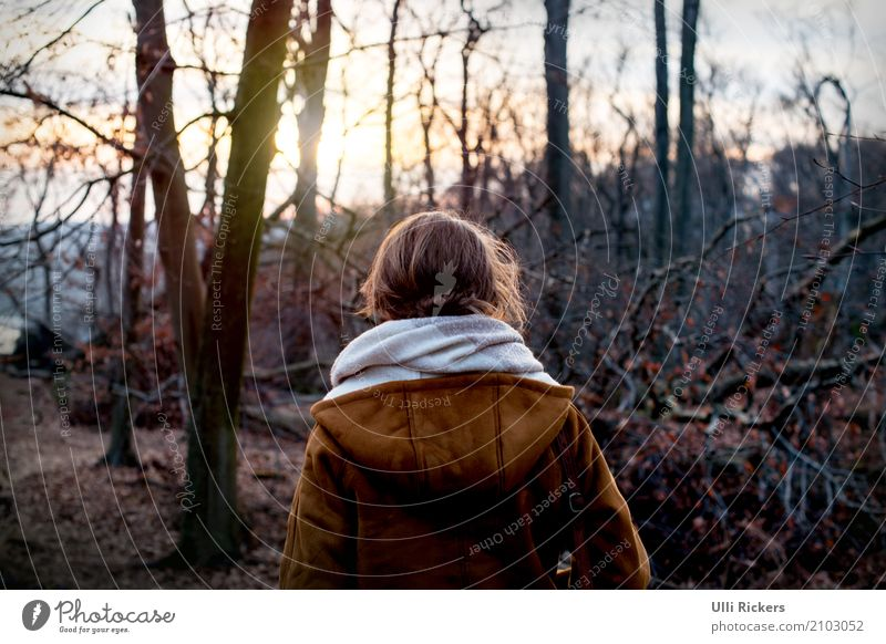 Human being Nature Vacation & Travel Youth (Young adults) Young woman Tree Landscape Calm Far-off places Winter Forest 18 - 30 years Dark Adults Yellow Sadness