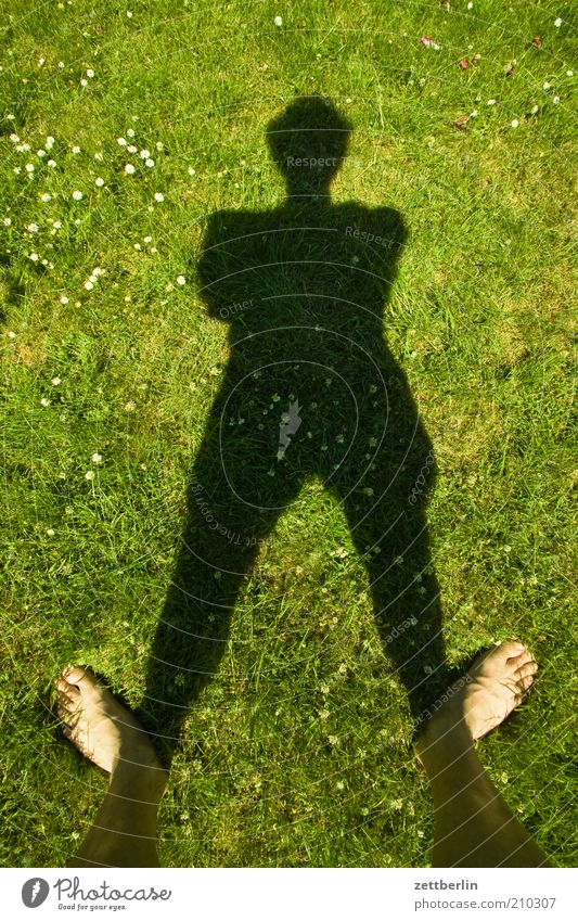 Human being Man Green Summer Black Meadow Grass Feet Lawn Stand Experimental Symbols and metaphors Daisy Toes Barefoot