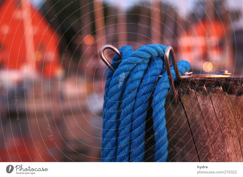 Blue Red Summer Calm Wood Moody Coast Rope Safety Esthetic Harbour Idyll Navigation Beautiful weather Maritime Copy Space left