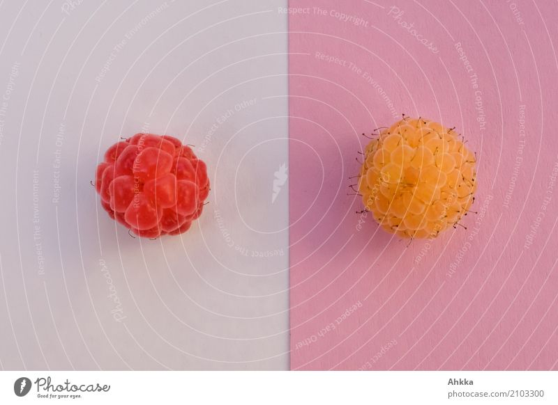 juxtaposition Fruit Raspberry Nutrition Organic produce Vegetarian diet Diet Fasting Slow food Finger food Delicious Round Yellow Pink Red White Arrangement