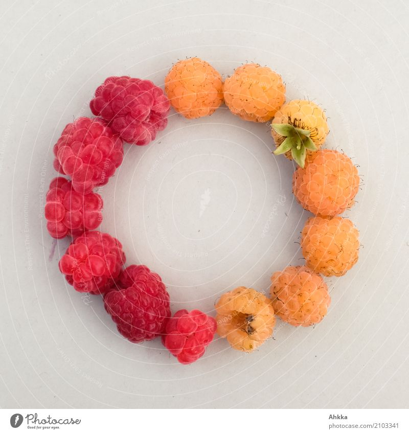 summer symbol Fruit Raspberry Organic produce Vegetarian diet Slow food Finger food Summer Circular Chain Round Yellow Red Trust Safety Safety (feeling of)
