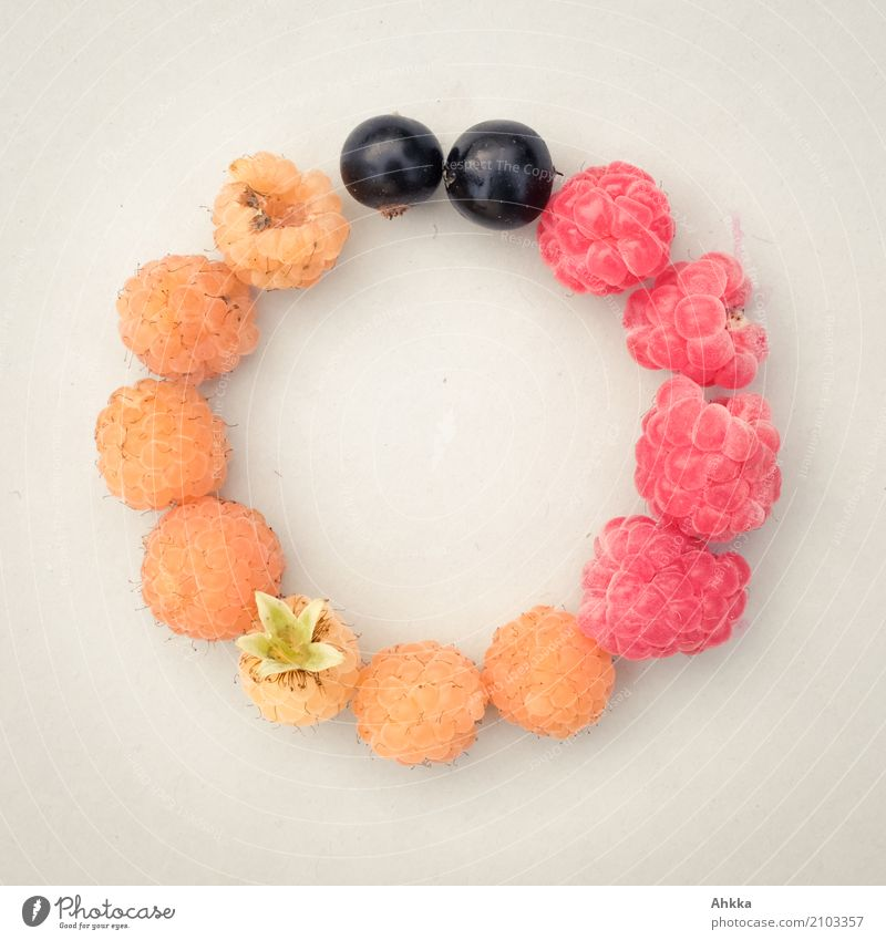 country group Fruit Organic produce Vegetarian diet Slow food Finger food Summer Germany Flag Circle Round Gold Red Black Trust Safety Together Colour Teamwork