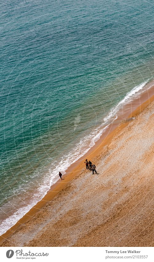 Group of friends walk on the beach Lifestyle Joy Happy Beautiful Leisure and hobbies Vacation & Travel Adventure Summer Beach Ocean Waves Hiking Woman Adults