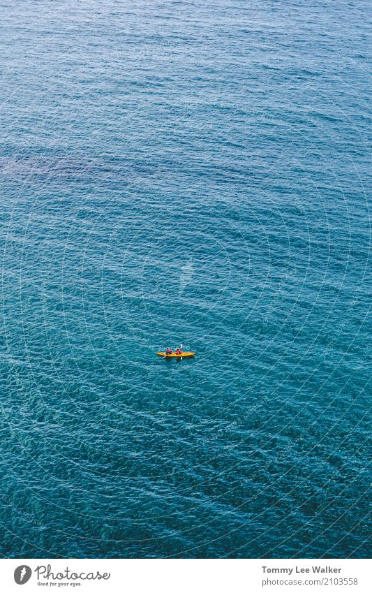 Team work on deep blue Lifestyle Adventure Ocean Sports Success Nature Water Earth North Sea Swimming & Bathing Authentic Far-off places Blue Orange Brave