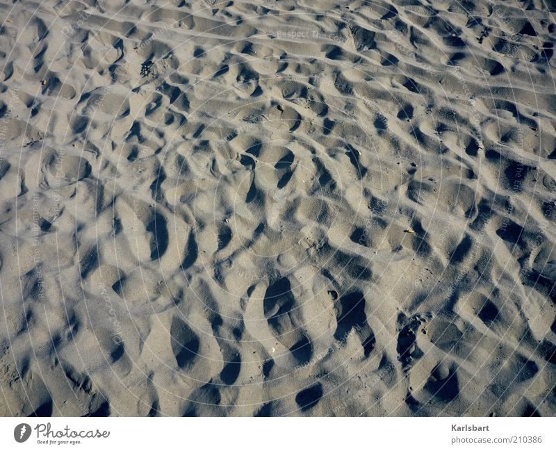 Tracks. Lifestyle Joy Vacation & Travel Summer Summer vacation Beach Island Nature Sand Coast Lakeside Desert Deserted Footprint Line Uniqueness Movement