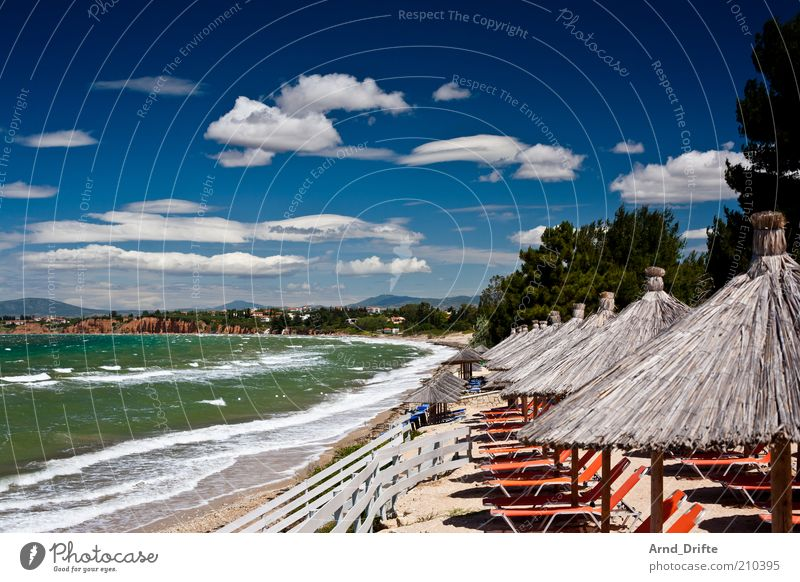 Sky Nature Blue Green Tree Relaxation Ocean Clouds Beach Coast Waves Wind Beautiful weather Kitsch Fence Sunshade