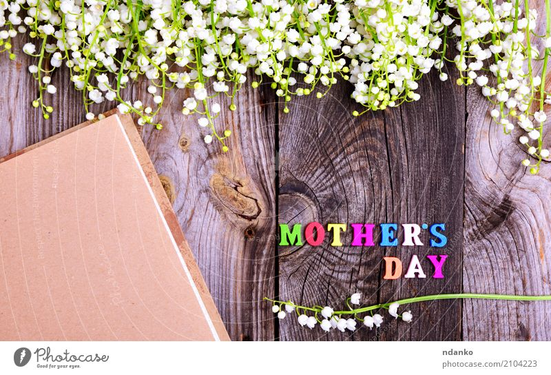wooden background with white lily of the valley Beautiful Garden Decoration Mother's Day Nature Plant Flower Blossom Paper Bouquet Wood Old Blossoming Bright