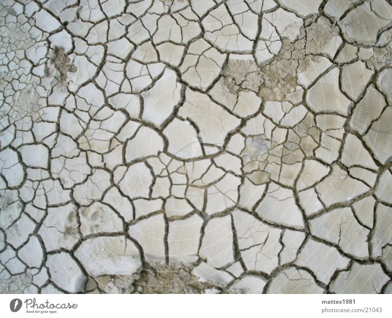 thirsty Crack & Rip & Tear Earth Dried Shriveled Dry Thirst Floor covering Ground Ibiza Groundwater Lacking Torn Vessel Life Loam Drought Old Death Thirsty