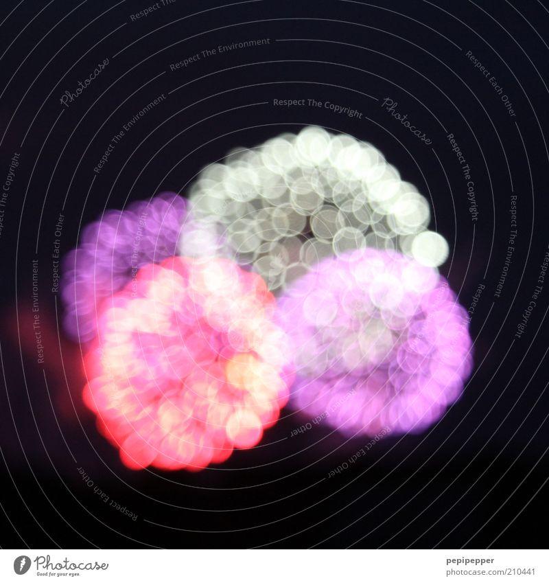 Glittering Illuminate Firecracker Visual spectacle Blur Point of light Patch of light Luminosity Light art Bright Colours
