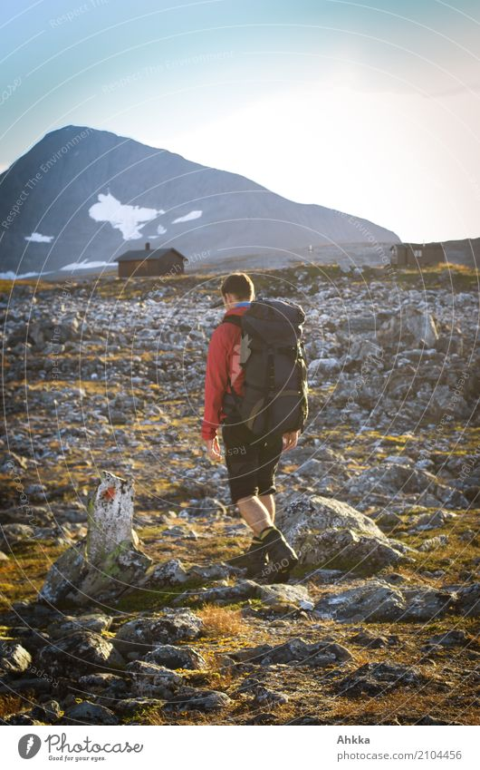 Goal in sight Calm Vacation & Travel Mountain Hiking Young man Youth (Young adults) Landscape Climate Rock Norway Troms Hut Stone Signs and labeling Walking