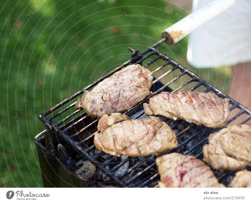 medium Food Meat Steak grilled meat Nutrition Masculine 1 Human being Barbecue (apparatus) Charcoal (cooking) Grill Delicious Juicy Green Barbecue (event)