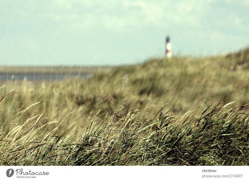 coastal protection Nature Landscape Summer Grass marram grass Coast Bay North Sea Island Ocean Navigation Lighthouse Beacon Illuminate Infinity Blue Green