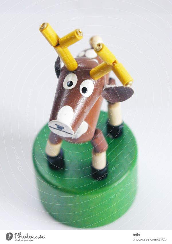 Stag Heinrich 01 Deer Wood Toys Animal Antlers Brown Curiosity Playing Yellow Green Stand Leisure and hobbies Reindeer Above Looking