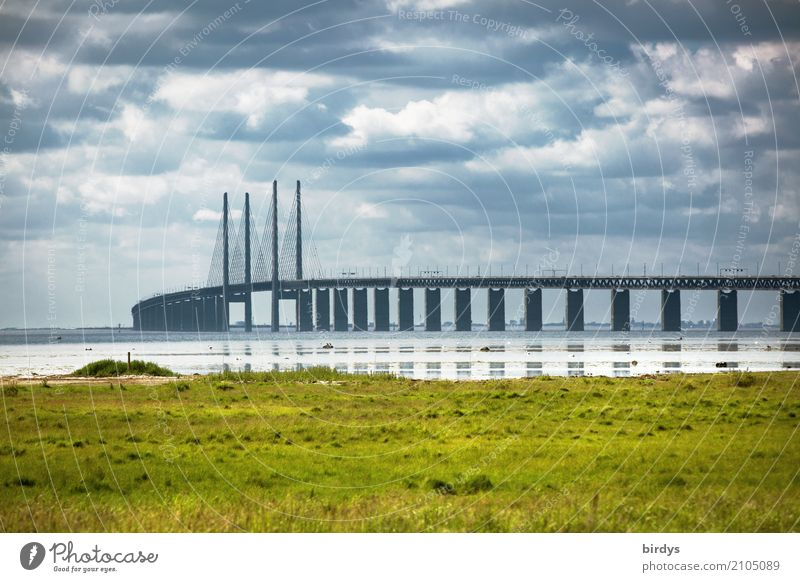 Öresund bridge near Malmö Clouds Summer Meadow Coast Baltic Sea Sweden Bridge Tourist Attraction Oeresund bridge Transport Traffic infrastructure Esthetic