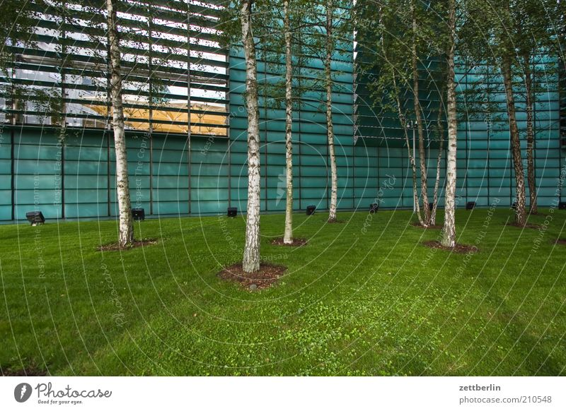 House (Residential Structure) Meadow Architecture Grass Bright Facade Lawn Manmade structures Section of image Disk Scandinavia Building Forest Nordic Slat blinds