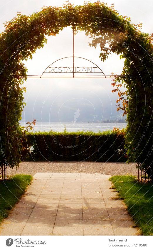 Water Sky Plant Relaxation Mountain Garden Lanes & trails Lake Park Warmth Elegant Esthetic Growth Bushes Alps Restaurant