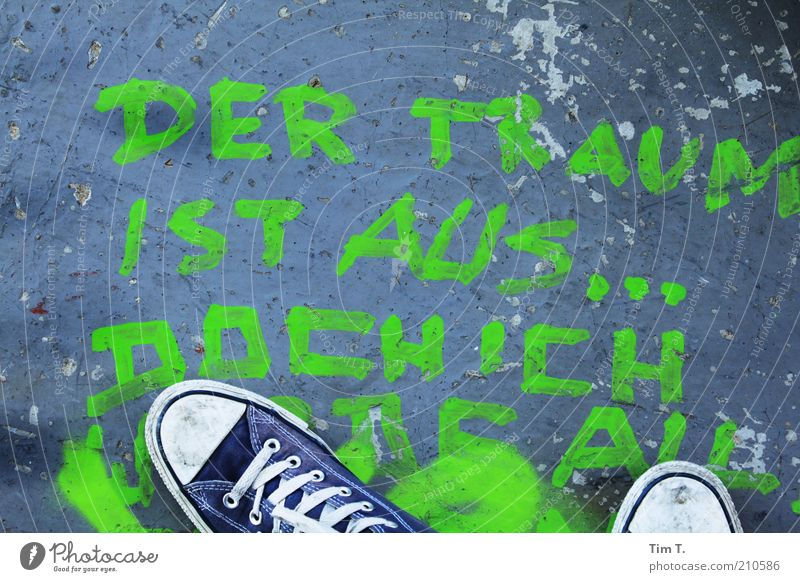 ...but I will give my all Feet 1 Human being Footwear Sneakers Characters Graffiti Stand Blue Green Colour photo Exterior shot Bird's-eye view Chucks Word