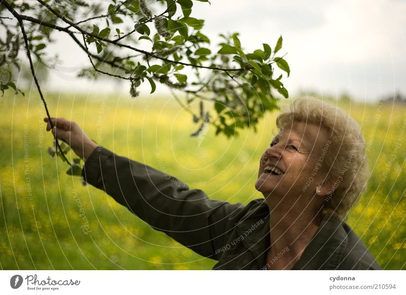Human being Woman Nature Leaf Joy Adults Life Emotions Senior citizen Meadow Happy Laughter Time Freedom Lifestyle Dream