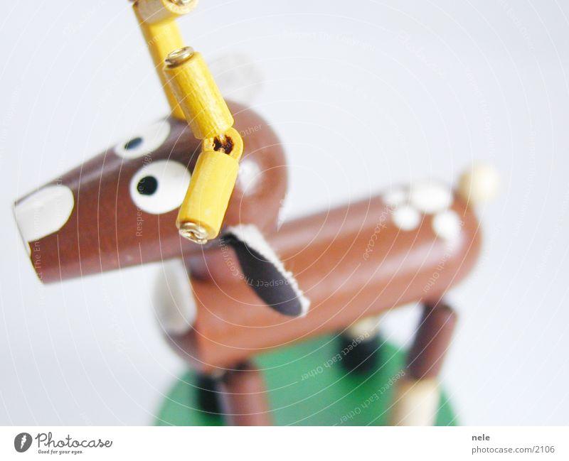 Animal Yellow Playing Above Wood Brown Leisure and hobbies Search Ear Curiosity Toys Antlers Deer Reindeer