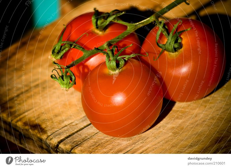 Tomatos Plant Colour Wood Kitchen Vegetable Agricultural crop
