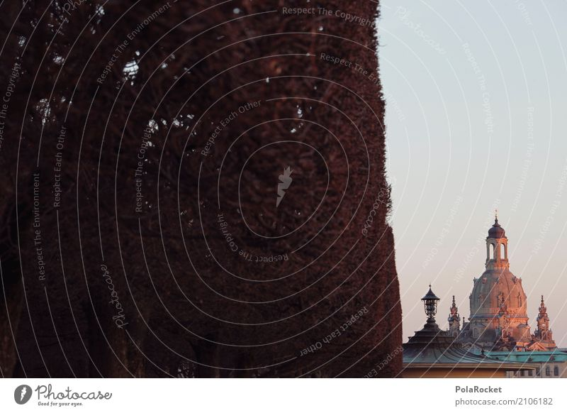 #A# Dresden cut Art Esthetic Frauenkirche Domed roof Landmark Tourist Attraction City trip Tourism Saxony Germany Hedge Silhouette Old town Baroque