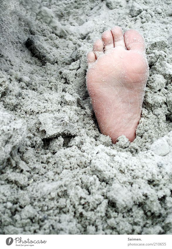 buried Child Feet Sand Beach Toes Sole of the foot Colour photo Exterior shot Close-up Detail Day Children's foot Bury Titillation Barefoot