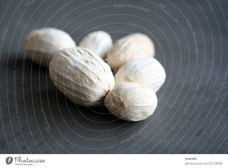 White Gray Bright Fruit Multiple Dry Symbols and metaphors Dried Arranged Legume Dried fruits Edible nut