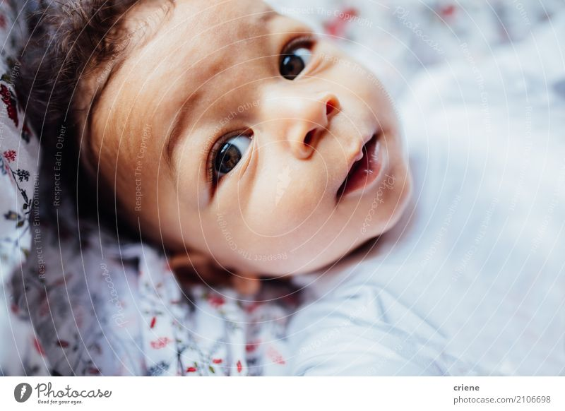 Close-up of little toddler boy looking in camera Human being Child Joy Life Lifestyle Boy (child) Small Bright Living or residing Masculine Lie Infancy Skin