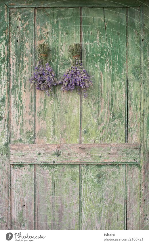 Lavender Herbs and spices Style Design House (Residential Structure) Decoration Nature Plant Leaf Blossom Facade Bouquet Wood Old Fresh Natural Brown Green