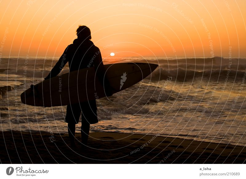 *100* in between dreams Far-off places Ocean Waves Surfing Surfboard Masculine Young man Youth (Young adults) Human being Cloudless sky Horizon Sunrise Sunset