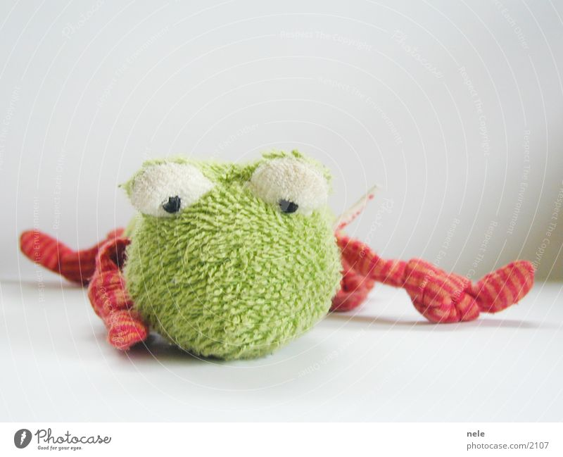frog face Green Toys Cloth Animal Grief Leisure and hobbies Frog Doll Lie Fatigue Sadness Weather
