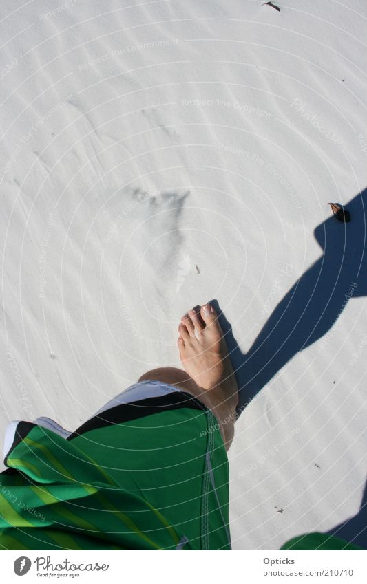 Whitehaven Beach Human being Masculine Legs Feet 1 Nature Elements Sand Summer Desert Going Walking Hiking Esthetic Happy Infinity Hot Thin