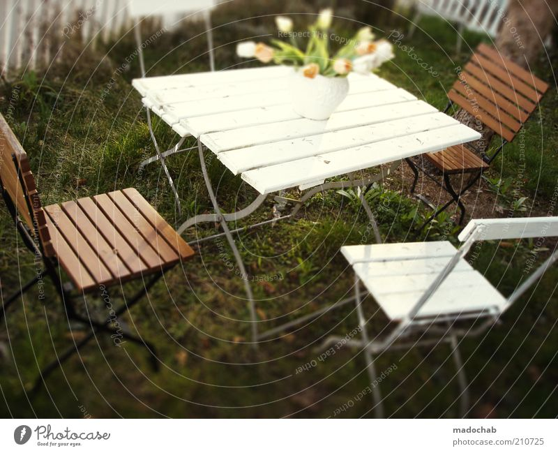 Table set you up Lifestyle Harmonious Well-being Contentment Relaxation Calm Vacation & Travel Living or residing Garden Anticipation Safety (feeling of)