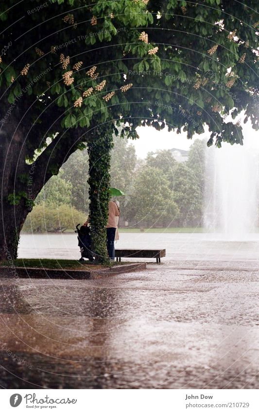Human being Tree Loneliness Sadness Park Rain Leisure and hobbies Wet Places Bushes Protection Umbrella Damp Bad weather Water Well