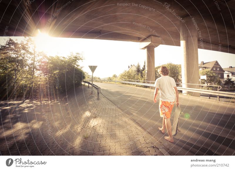 This is where I live | No. 008 Style Skateboarding Young man Youth (Young adults) Sun Sunlight Summer Beautiful weather Warmth Bridge Street Crash barrier