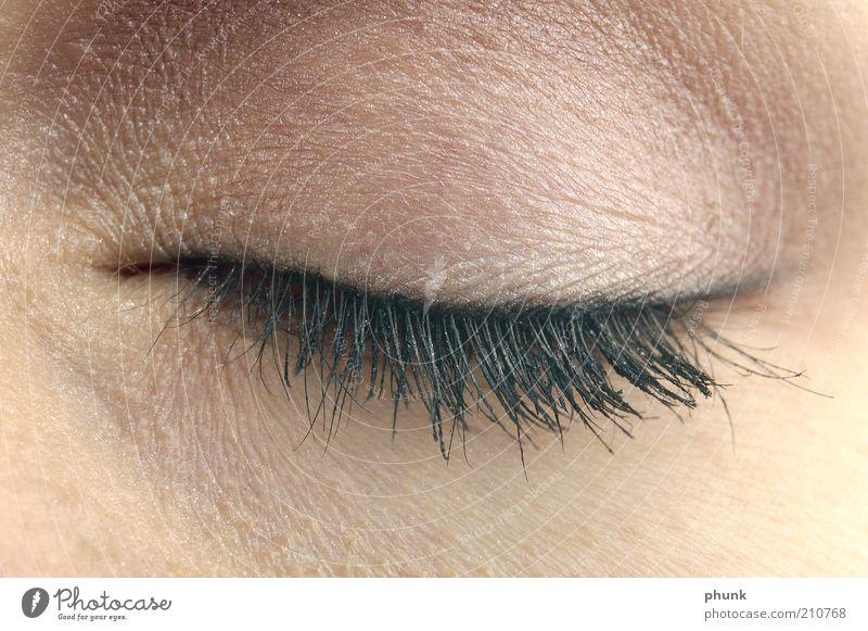 Human being Woman Beautiful Face Adults Eyes Feminine Emotions Style Moody Elegant Skin Lifestyle Cosmetics Make-up Eyelash