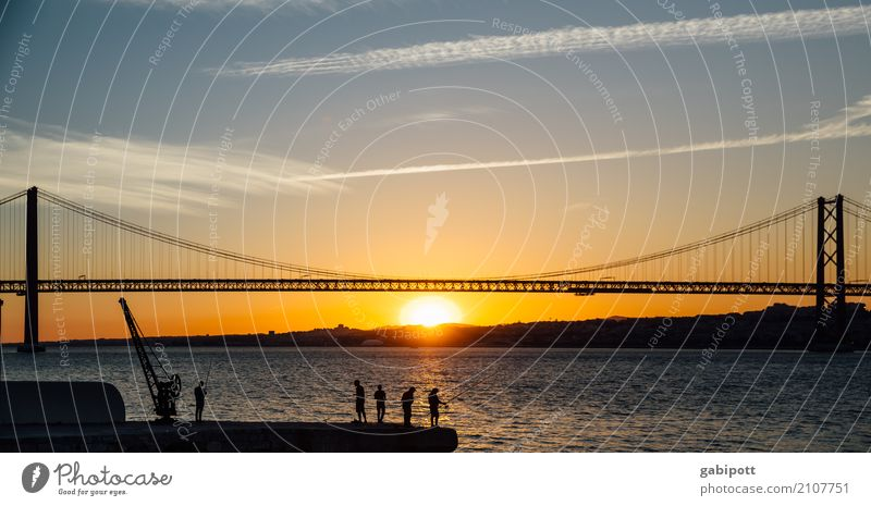 At the river Vacation & Travel Tourism Trip Adventure Far-off places Sightseeing City trip Summer vacation Landscape Beautiful weather River bank Tejo Bridge