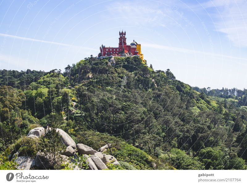 Sintra - Palacio de Pena Relaxation Vacation & Travel Tourism Trip Adventure Far-off places Sightseeing City trip Summer Summer vacation Mountain Hiking