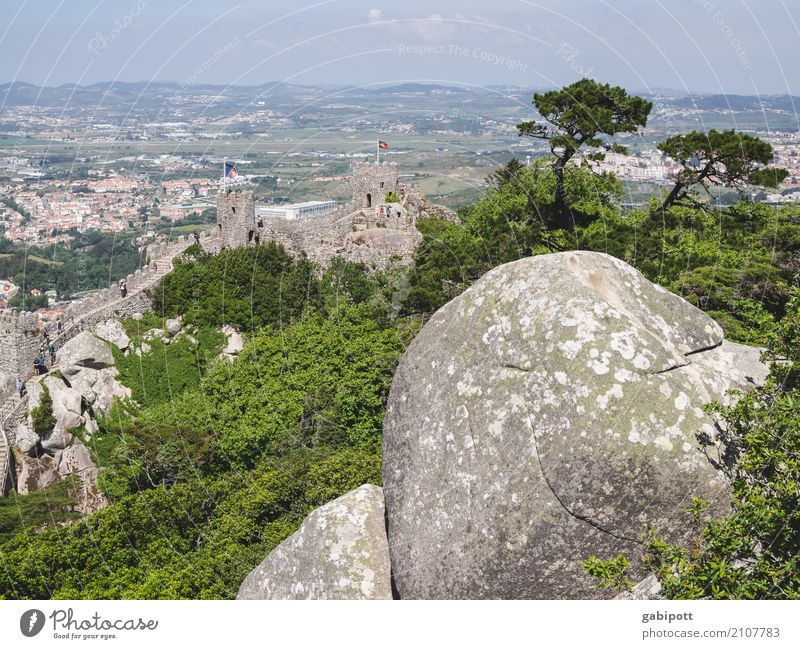 Nature Vacation & Travel Blue Summer Green Landscape Relaxation Calm Far-off places Forest Travel photography Environment Natural Tourism Stone Rock