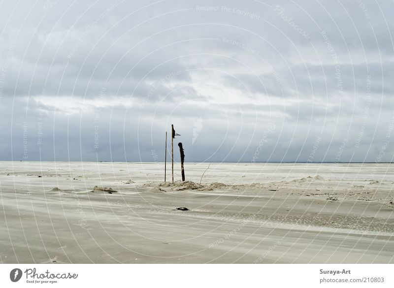 Nature Sky White Blue Beach Vacation & Travel Clouds Far-off places Lanes & trails Sand Landscape Moody Wind Trip Empty