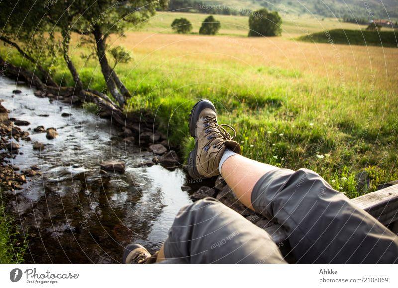Legs dangling over a river in summer landscape Feet 1 Human being Environment Landscape Water Grass Park Meadow Brook Bridge Playing Jump Happiness
