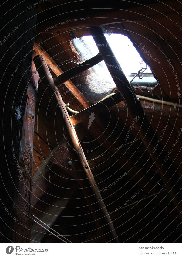 Old Window Wood Roof Ladder Attic Spider's web Joist