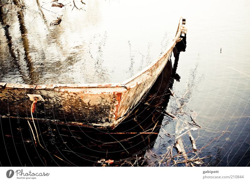 Nature Water Lake Watercraft Environment River Broken Transience Derelict Decline Rust Past Lakeside Elements River bank Go under